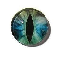 Dragon Eye 016, 25mm Glas Cabochon Rond