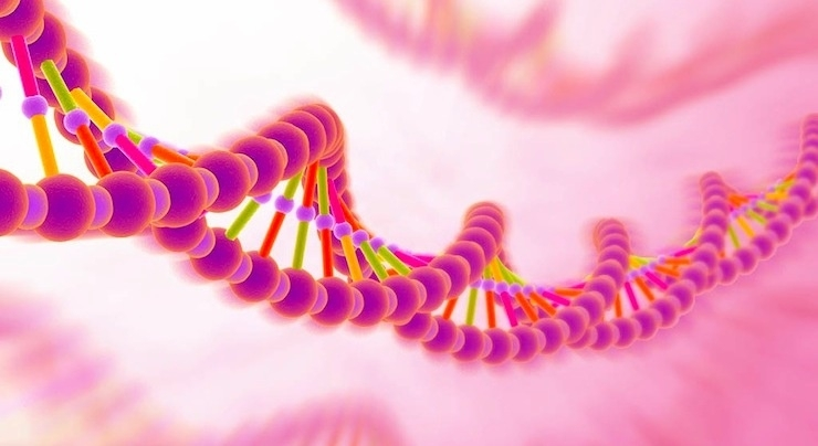 DNA Masters Activation 12 strands