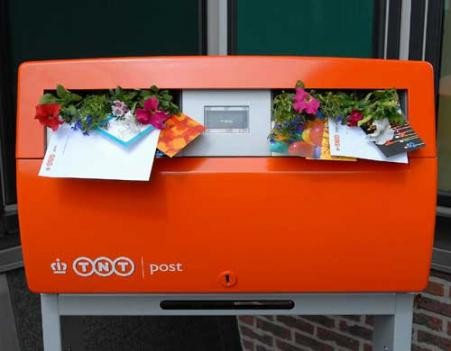 brievenbusbloemen500tcm46-307107.jpg