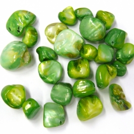 schelp kraal nugget ongeveer 10mm kleur groen (BJSC038) - 5 stuks