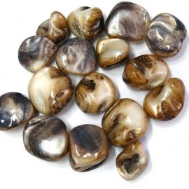 schelp kraal nugget ongeveer 10mm kleur bruin (BJSC040) - 5 stuks