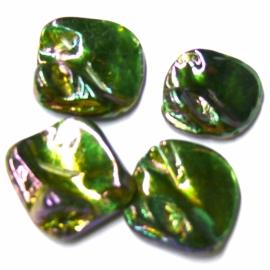 schelp kraal platte onderkant grillige bovenkant kleur parelmoer groen 14x17mm (BJSC032)