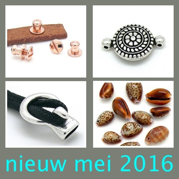 nieuwmei2016.jpg