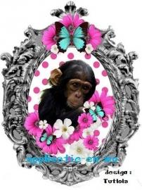 SUPER full color applicatie chimpansee