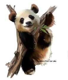 SUPER full color strijkapplicatie panda