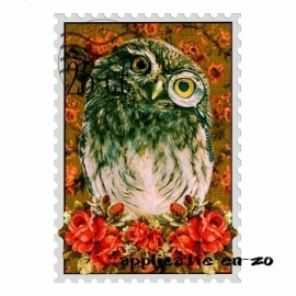 SUPER full color strijkapplicatie postzegel uil
