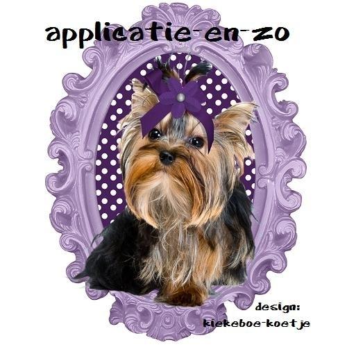 SUPER full color applicatie Yorkshire Terrier