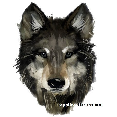 SUPER full color strijkapplicatie wolf