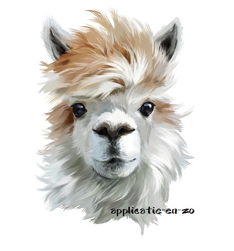 SUPER full color strijkapplicatie Alpaca