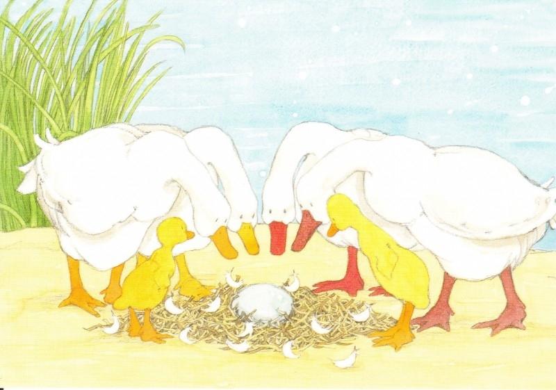 Kaart Het ei