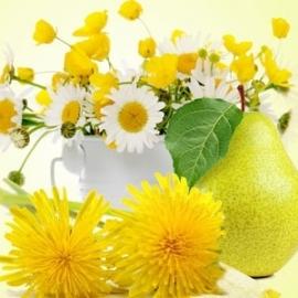 Dandelion & Pear