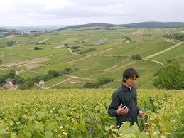 Verliefd op Cabernet Franc - By The Grape