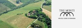 Italië: Albana Vigna della Rocca DOCG (Orange Wine)