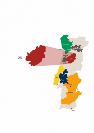 Portugal: Boas Quintas - Encosta da Vinha Branco