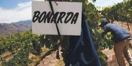 Bonarda...! - By The Grape