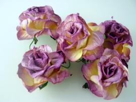 Paars 2 kleurige roos 5cm g3-538 per stuk