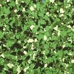 Flock groen tinten