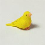 Vogeltje Geel