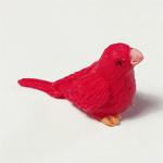 Vogeltje rood
