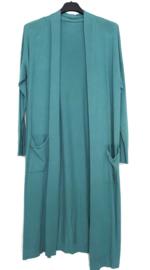 Lang vest groen-blauw
