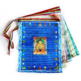 Kleurrijke Tibetaans Boeddhistische gebedsvlaggenlijn