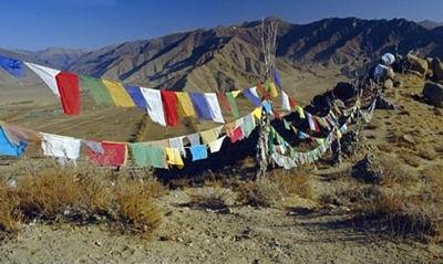 Tibetaanse gebedsvlaggetjes large, slinger van 25 vlaggetjes