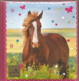 Goldbuch poeziealbum Paarden