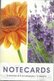 Notecards Bloemen