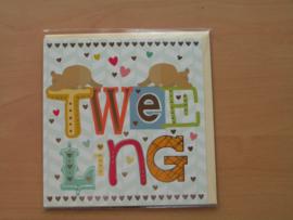 Wenskaart  Geboorte Tweeling Square