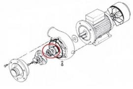 Asafdichting 2,2 kW pomp Rhima WD12