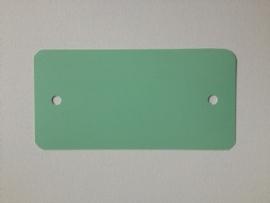 PVC-labels 54x108mm pastel groen 2 gaten 1000st Td35987121
