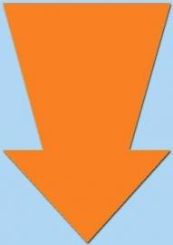 Pijl fluor oranje 15cm 50st Tfr 15015P