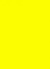 Prijskaart fluor geel 6x8cm 100st Tfr060816K