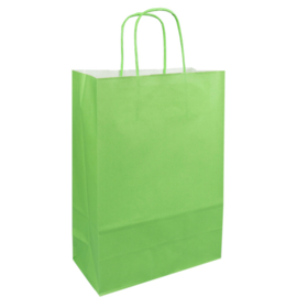 Papieren draagtas groen 22/10x31cm Tpk270631