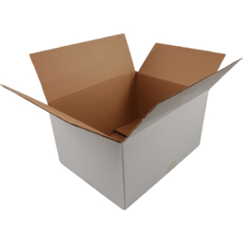 Vouwdoos karton 250x180x100mm 25st Tpk385046