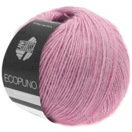 Ecopuno 21