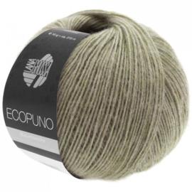 Ecopuno 27