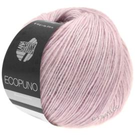Ecopuno 08