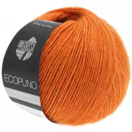 Ecopuno 05