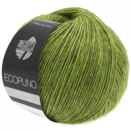 Ecopuno 02