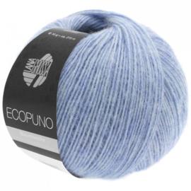 Ecopuno 13