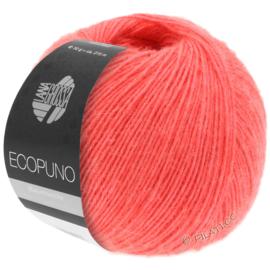 Ecopuno 39