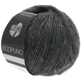 Ecopuno 15