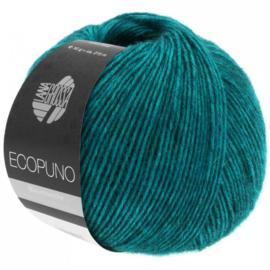 Ecopuno 12