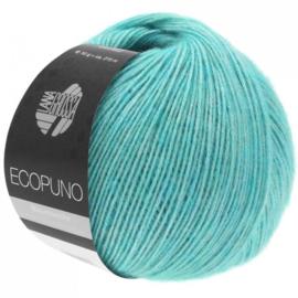 Ecopuno 28