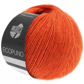 Ecopuno 34