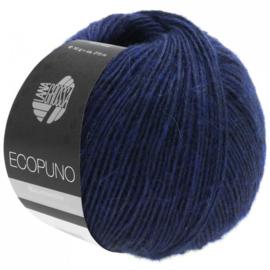 Ecopuno 10