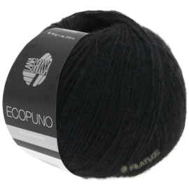Ecopuno 16