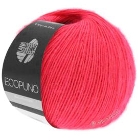 Ecopuno 36