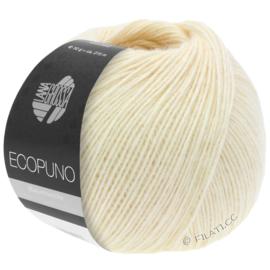 Ecopuno 46
